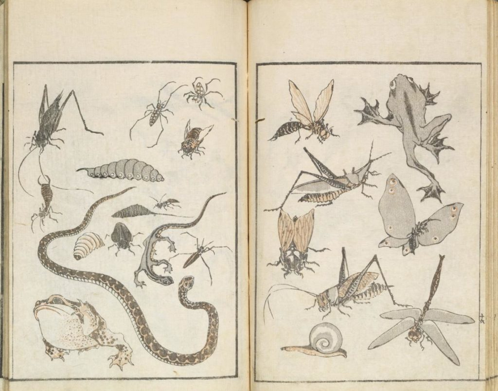 hokusai-manga