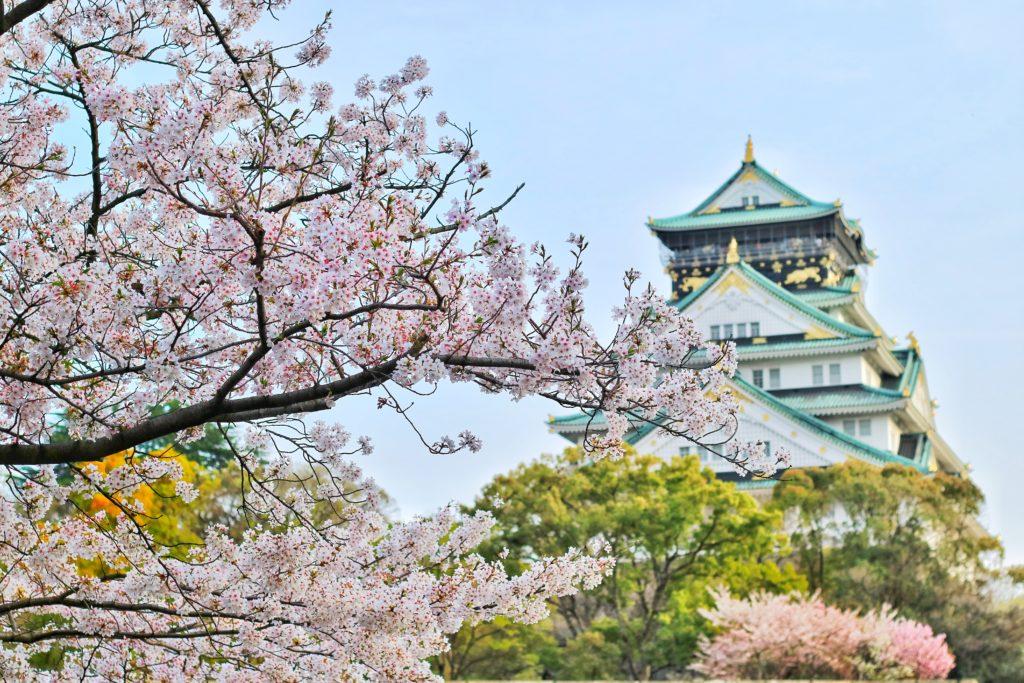 japon-chateau-cerisiers